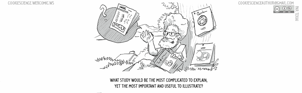 935 - What is the most important study to draw?